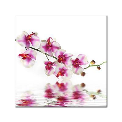 Leinwandbild - Orchideenzweig – Bild 2