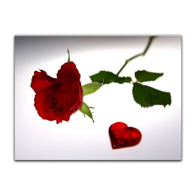 Leinwandbild - Rose mit Herz – Bild 7