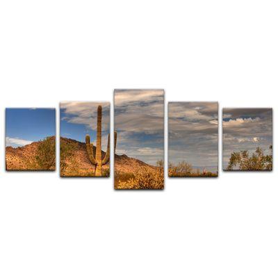 Leinwandbild - Wüste Kaktus – Bild 16