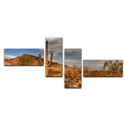 Leinwandbild - Wüste Kaktus – Bild 15