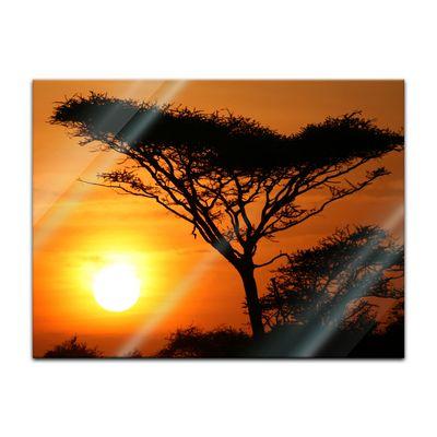 Glasbild - Akazienbaum im Sonnenuntergang, Tanzania Serengeti Afrika – Bild 2