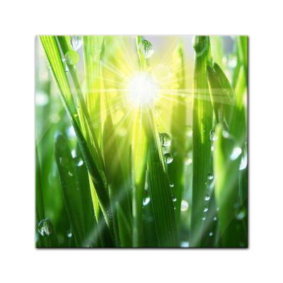 Glasbild - Gras II  – Bild 1