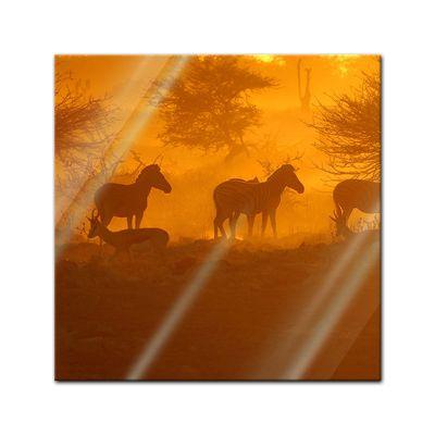 Glasbild - Kenia am Morgen – Bild 1