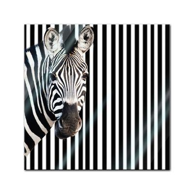 Glasbild - Zebra vor einem gestreiften Hintergrund – Bild 1