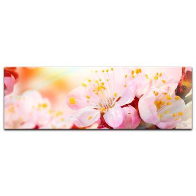 Glasbild - Aprikosenblüten – Bild 3