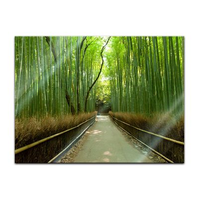 Glasbild - Bambuswald in Arashiyama - Japan – Bild 2