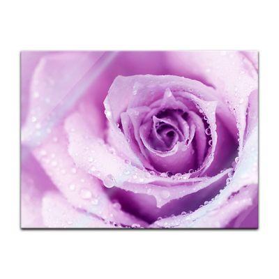 Glasbild - Lila Rose mit Tropfen II – Bild 2