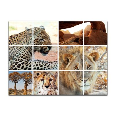 Glasbild - Afrika Collage I – Bild 4