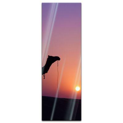 Glasbild - Kamel im Sonnenuntergang – Bild 7