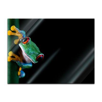 Glasbild - Laubfrosch – Bild 2