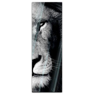 Glasbild - Löwe – Bild 7