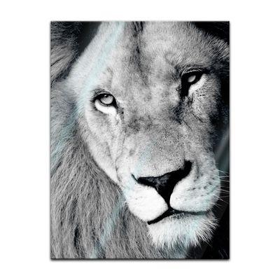 Glasbild - Löwe – Bild 3