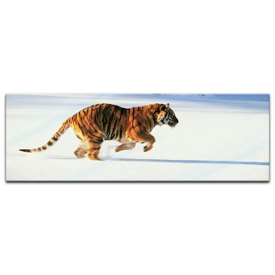 Glasbild - Tiger – Bild 4