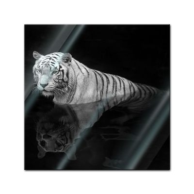 Glasbild - Weisser Tiger – Bild 1