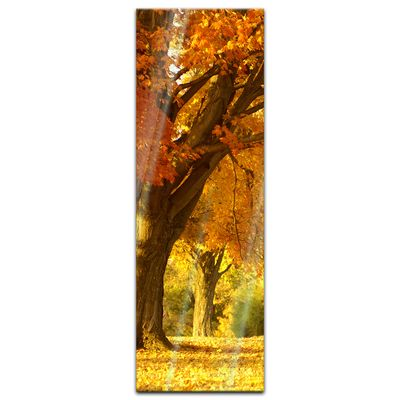 Glasbild - Herbst Szene – Bild 7