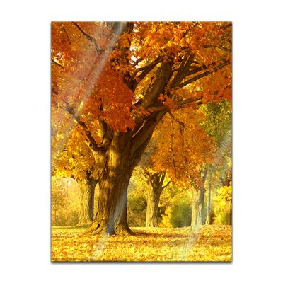 Glasbild - Herbst Szene – Bild 3