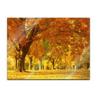 Glasbild - Herbst Szene – Bild 4