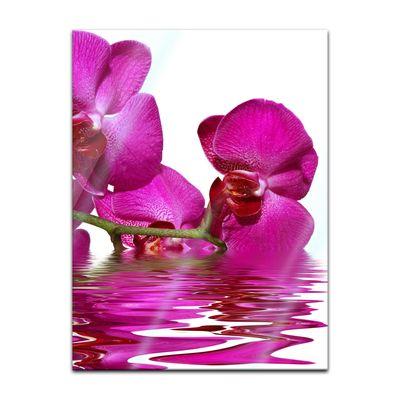 Glasbild - Orchidee II – Bild 3