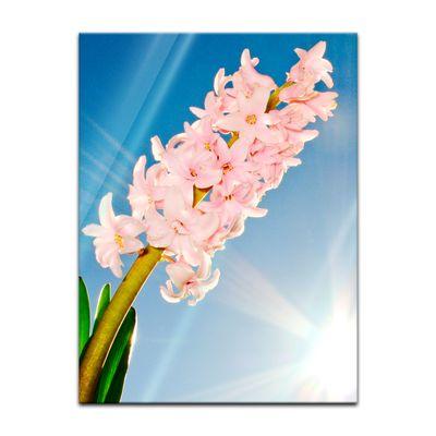Glasbild - Blume – Bild 3