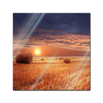 Glasbild - Kornfeld - Stroh – Bild 1