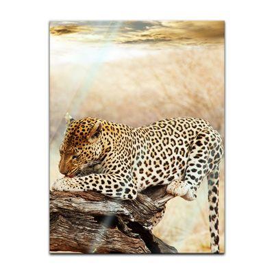 Glasbild - Leopard – Bild 3