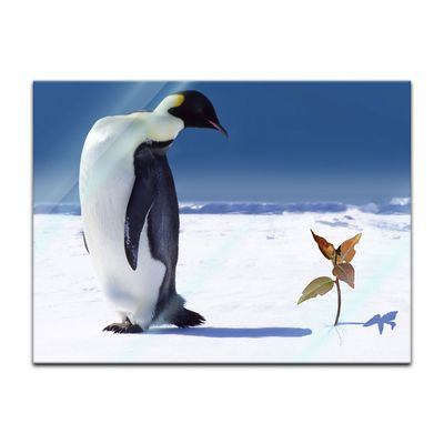 Glasbild - Pinguin mit Blume – Bild 2