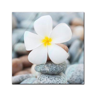 Glasbild - Weisse Blüte auf Steinen – Bild 1
