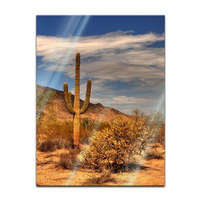 Glasbild - Wüste Kaktus – Bild 5