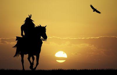 Fototapete - Crazy Horse – Bild 2