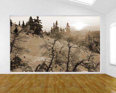 Fototapete - Gefrorene Bäume – Bild 3
