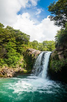 Fototapete - Tawhai Falls - Neuseeland – Bild 2