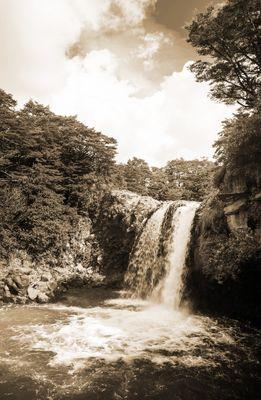 Fototapete - Tawhai Falls - Neuseeland – Bild 4