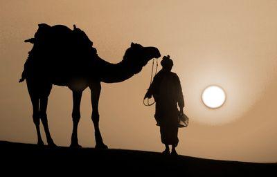 Fototapete - Thar Wüste - Indien – Bild 4