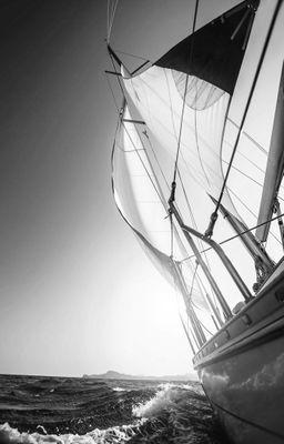 Fototapete - Yacht auf See II – Bild 6