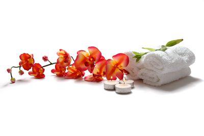 Fototapete - Orchidee Spa – Bild 2