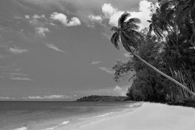 Fototapete - Perfect Beach – Bild 6