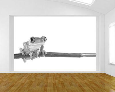 Fototapete - Rotaugenlaubfrosch – Bild 5