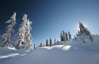 Fototapete - Schneelandschaft – Bild 2