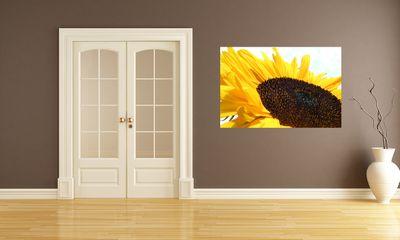 Fototapete - Sonnenblume – Bild 1