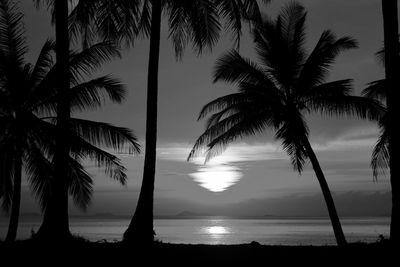 Fototapete - Sonnenuntergang in der nähe des Äquators – Bild 6