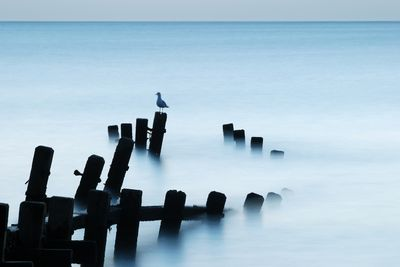 Fototapete - Moonlit Sea, Norfolk – Bild 2