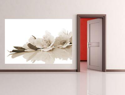 Fototapete - Orchidee – Bild 5