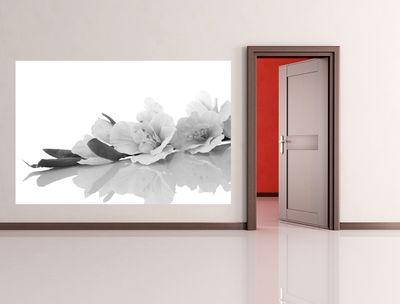 Fototapete - Orchidee – Bild 3