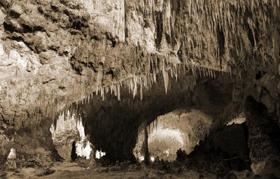 Fototapete - Carlsbad Caverns - National Park in den USA – Bild 4