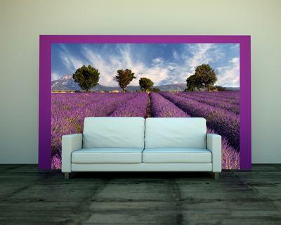 Fototapete - Lavendelfeld Provence - Frankreich – Bild 1