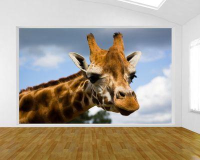 Fototapete Giraffe
