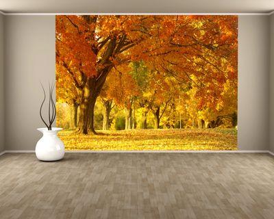 Fototapete Herbst II – Bild 1