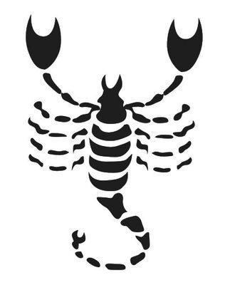 Wandtattoo Sternzeichen Skorpion – Bild 2