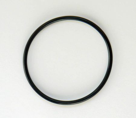Ersatzteil: O-Ring für Pumpendeckel Bypass 55, Bypass 2000, Carry 2000