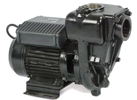"""Piusi E 300 Kreiselpumpe für Diesel, 230V 50Hz,  max. 550l/min., bedingt selbstansaugend. Anschlüsse 2"""", Sauganschluss mit Rückschlagklappe – Bild 1"""